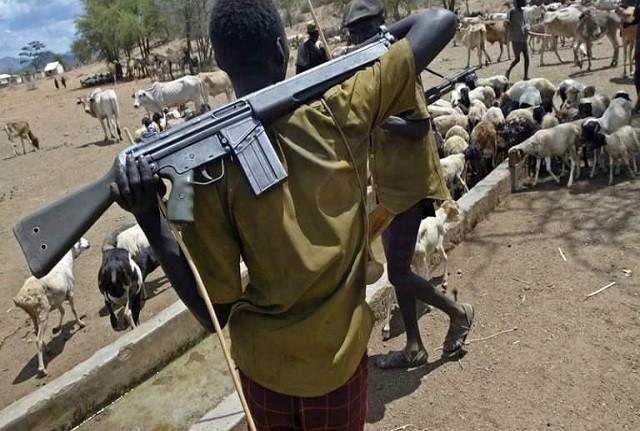 Herdsmen or Armsmen: How Safe are Nigerians?