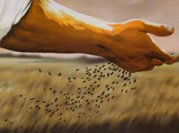 THE SEED OF PURPOSE