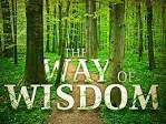 3 Things Wisdom Can Do To Anybody